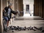 Pigeon man.