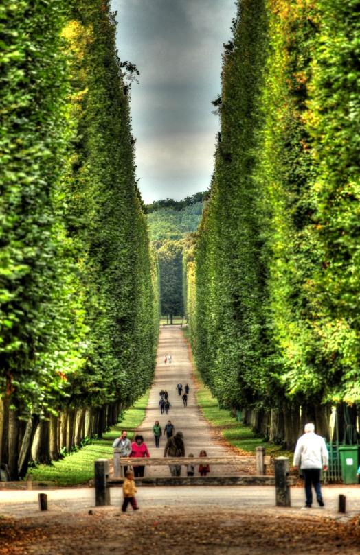 Versailles Palace Lane