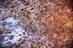 Lubumbashi Mud