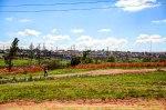 Soweto Township