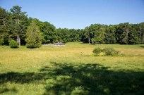 _MGL6589_pasture home