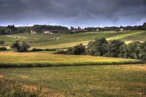 _MGL7969_70_71_Farmland