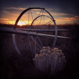 Tines and spokes connect to the circle of seasons.