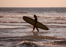 DSC_0015_Surferweb