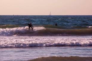 DSC_0018_Surfing_web
