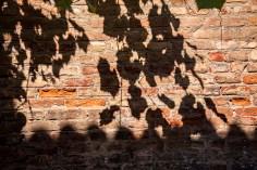 IMG_8699_Leave Shadows