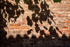 IMG_8699_Leave Shadows