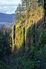 Cliff near Multnomah Falls