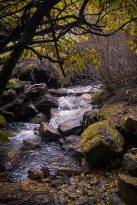 Mountain stream.