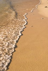 Sandy waterline.