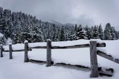 Near Tibble Fork reservoir