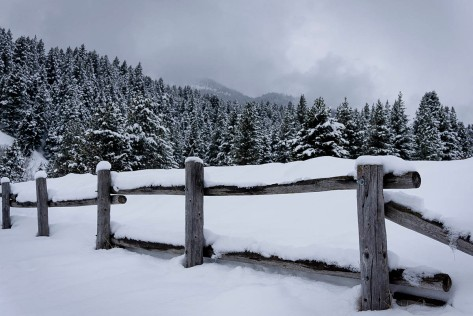 DSC05207_Snow Fence