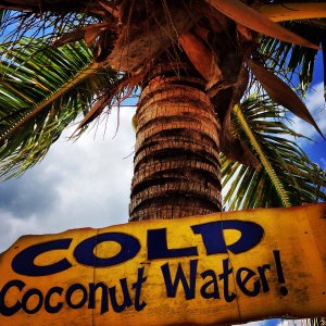 Cold Coconut Water