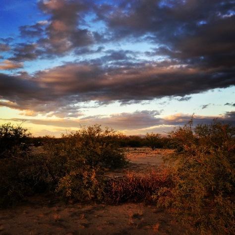 Marana sunset.