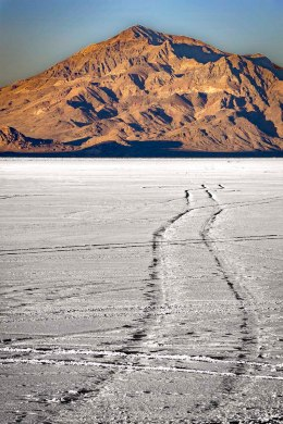 Tire tracks on the Bonneville Salt Flats.